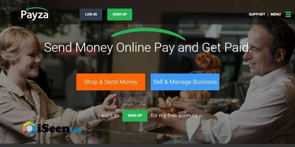 Payza alternatives to paypal